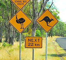 Dangerous School Buses and Wildlife by Penny Smith