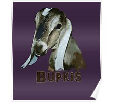 Bupkis Poster