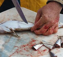 Fisherman's Hand. by aussiebushstick