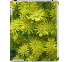 Yellow Succulent Flowers Photograph iPad Case/Skin