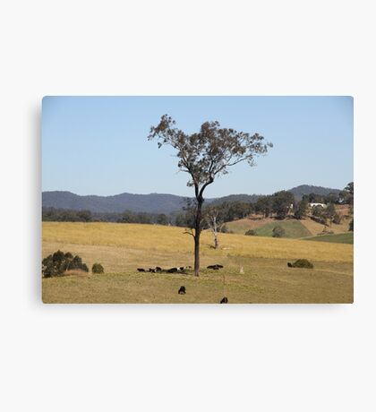 Not Much Shade. Canvas Print