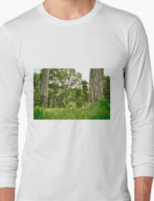 Spring natural image with green tress and grass. Park Long Sleeve T-Shirt