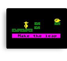 Make the Leap Canvas Print