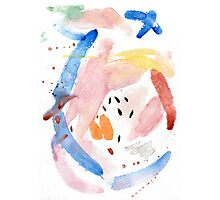 Spring Swallow, Abstract Painting Photographic Print