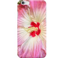 Orchid in Pink and White iPhone Case/Skin