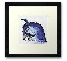 Blue Hawk Framed Print