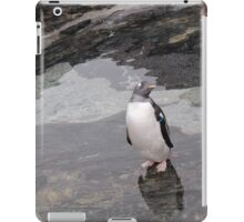 Lonely Penguin iPad Case/Skin