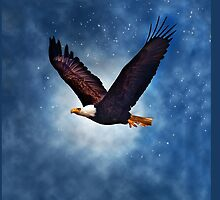 Soar like an Eagle by Kathy Weaver