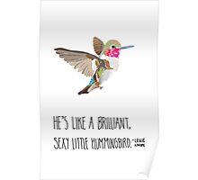 Sexy Little Hummingbird Poster
