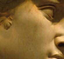 Michelangelo Study; The Face Sticker