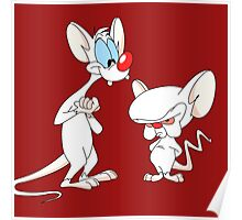 Best Friend Pinky And Brain Poster