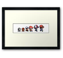 Pokemon evolution Framed Print