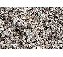 Oyster shells Photographic Print