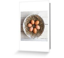 eggs in hay Greeting Card