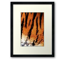 Tiger Fur Framed Print