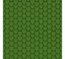 Green Dragon Scales Photographic Print