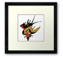 Rude Flash - Cool story bro  Framed Print