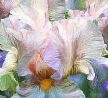 Iris Moods 3 by Carol  Cavalaris