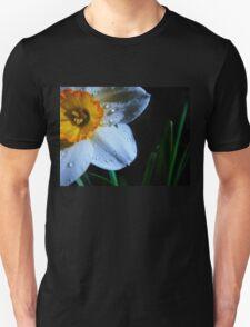 Daffy before night. T-Shirt