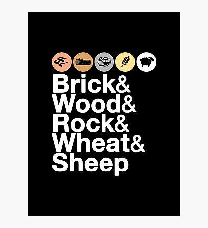 Helvetica Settlers of Catan: Brick, Wood, Rock, Wheat, Sheep | Board Game Geek Ampersand Design Photographic Print