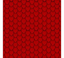 Red Dragon Scales Photographic Print