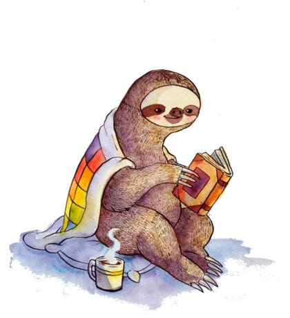 Cozy Sloth Sticker