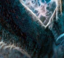 Saphira The Dragon From The Hit Eragon Movie Sticker