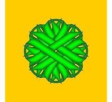 Lime Green Flower Ribbon Photographic Print