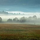 Misty Valley by Gary L   Suddath