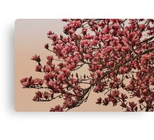 Magnolia Tree In Bloom - Antique Victorian Needlepoint Effect Canvas Print