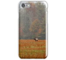 Majestic Realm    iPhone Case/Skin