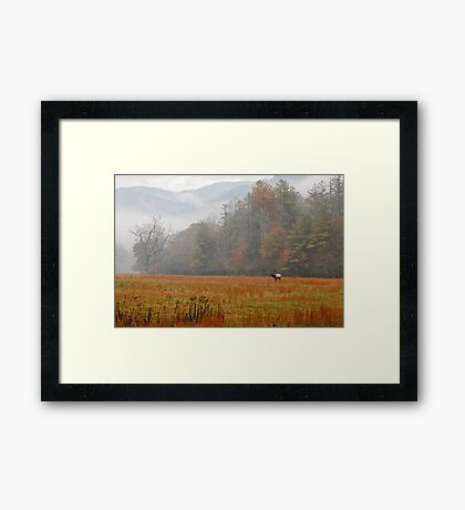Majestic Realm    Framed Print