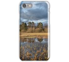 A perfect evening iPhone Case/Skin