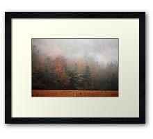 Misty Fall Morn Framed Print