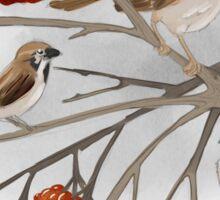 Sparrows Sticker