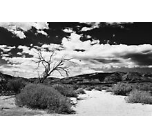 Black and white desert Photographic Print