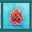 Seashells by Robin Monroe