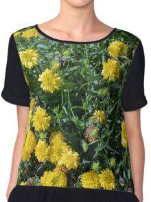 Bush of yellow flowers. Chiffon Top