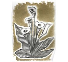Calla in charcoal (1 of 3) Poster