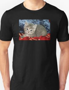 Gray Kitty on a Red Blanket Unisex T-Shirt