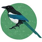 Magpie by threeblackdots