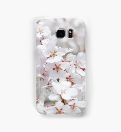 Soft White Sakura Samsung Galaxy Case/Skin