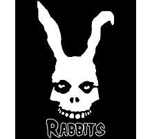 Rabbits. Photographic Print