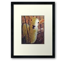 wolly Framed Print