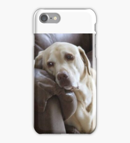 YELLOW LAB iPhone Case/Skin