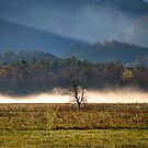 Cades Cove Spring 2016, HDR by photodug
