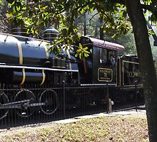DOLLYWOOD EXPRESS by WINTERROSE