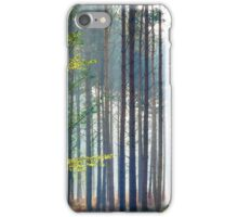 Tree trunks in the mist, New Forest, England. iPhone Case/Skin