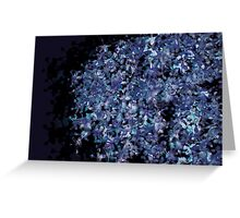 Lucid Nature Collection 1/10 Greeting Card