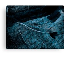 Lucid Nature Collection 3/10 Canvas Print
